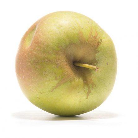 SP-Apfel-Boiken-(3)