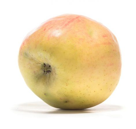 SP-Apfel-Finkenwerder-Prinzenapfel-(6)