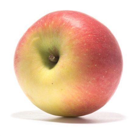SP-Apfel-Frida-(3)