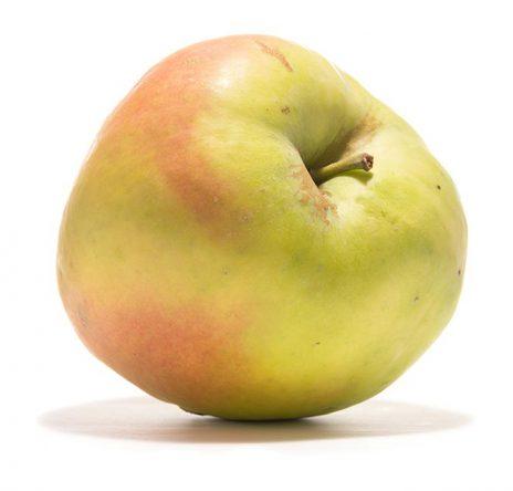 SP-Apfel-Grahams-Jubiläumsapfel-(2)