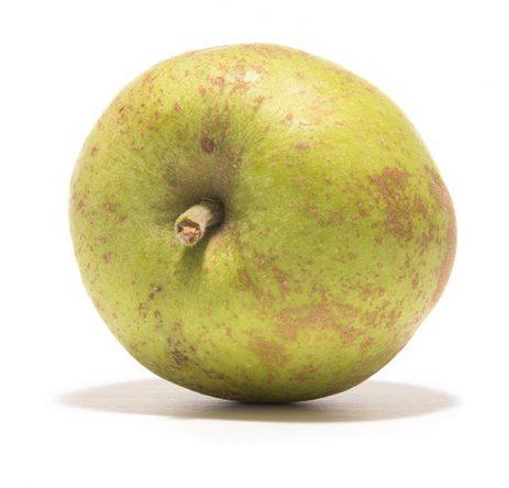 SP-Apfel-Graue-Herbstrenette-(3)