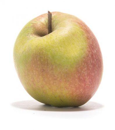 SP-Apfel-Mutterapfel-(2)
