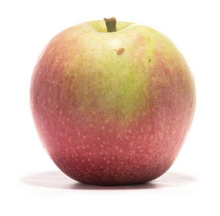 SP-Apfel-Rheinischer-Bohnapfel-(3)