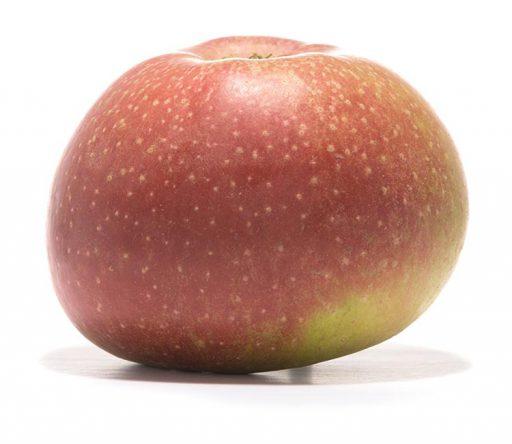 SP-Apfel-Roter-Boskoop-Schmidt-Hübsch-(2)