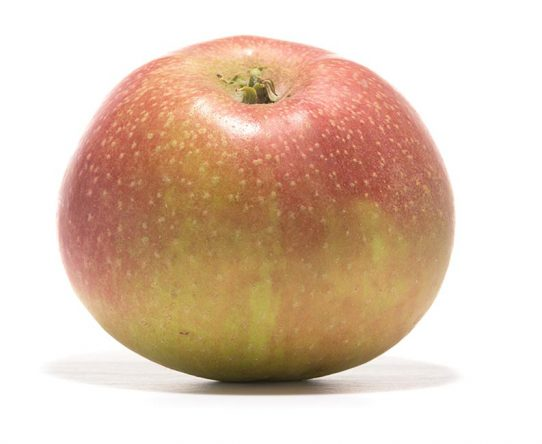 SP-Apfel-Roter-Boskoop-Schmidt-Hübsch-(4)