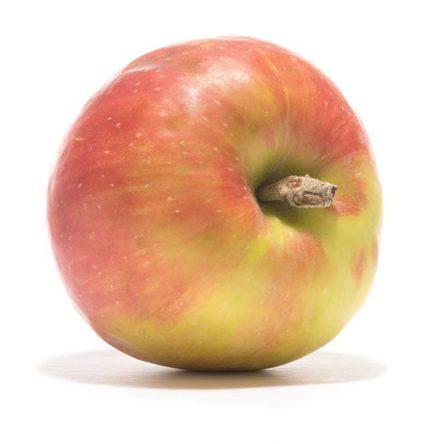 SP-Apfel-Roter-Gravensteiner-(4)