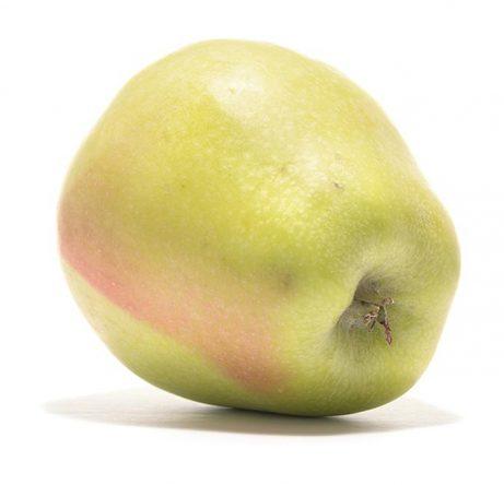 SP-Apfel-Weißer-Winterglockenapfel-(2)