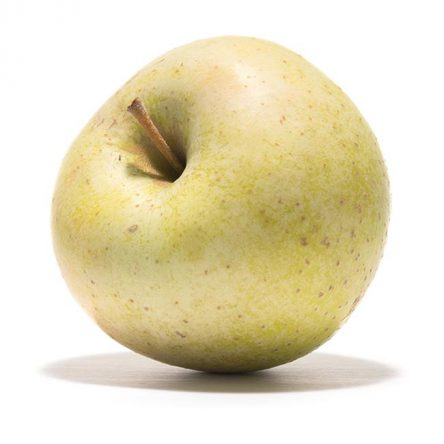 SP-Apfel-Zuccalmagliorenette-(2)